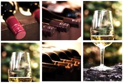 Saiba como armazenar o vinho