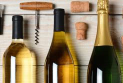 Um pouco de tudo o que você precisa saber sobre vinhos