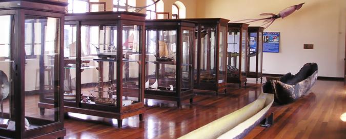 Mar_Del_Plata_-_Blog_-_Museu_de_Pesca (1)