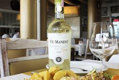 Harmonização de vinhos , peixes e frutos do mar
