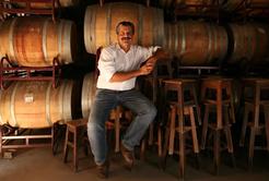 Conheça os vinhos Paulo Laureano