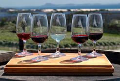 One Tree – Vinho tinto da Nova Zelândia