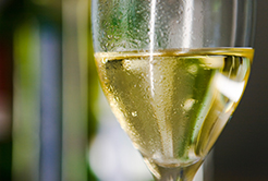 Qual a temperatura ideal para o vinho