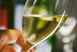 Vinho Branco Argentino – Yauquen