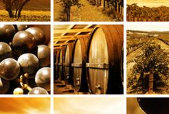 Vinhos Australianos