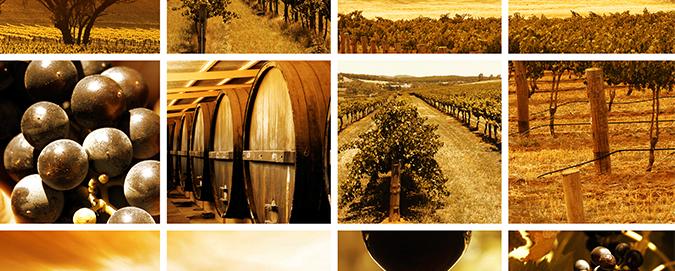 mar-del-plata---blog---vinhos-australianos