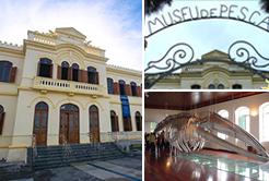 O Museu da pesca de Santos