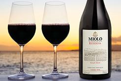 Vinho Miolo – Reserva Pinot Noir