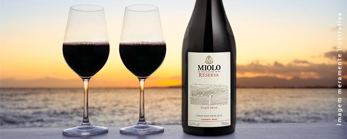 Mar Del Plata - Blog - Vinho Miolo Reserva