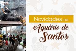 Novidades no Aquário de Santos
