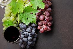 Conheça quais os tipos de uvas usadas em vinhos tintos