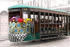 História do Carnaval Santista