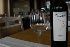 Dicas de vinho para brindar no inverno